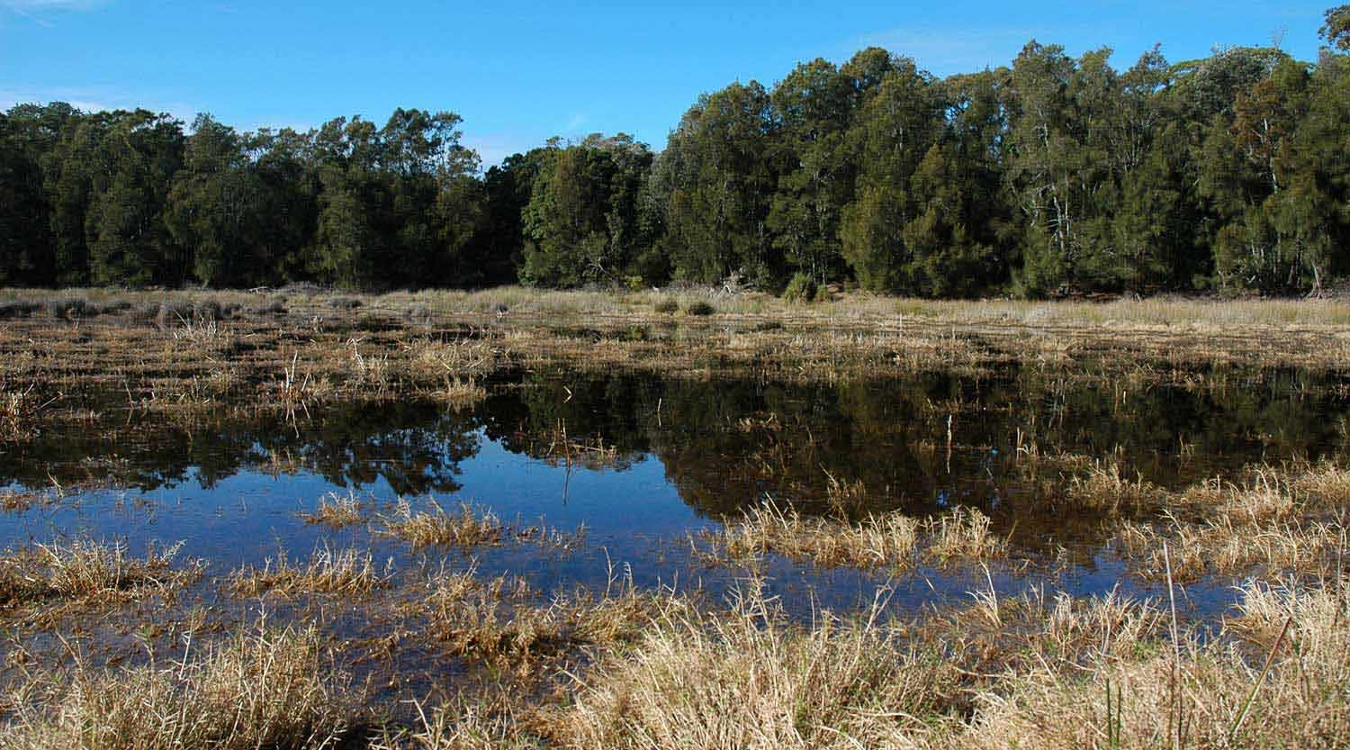 Ryans Swamp at Booderee National Park