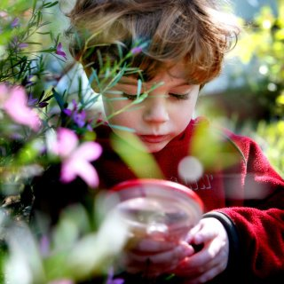 A child exploring plants with a magnifying glass