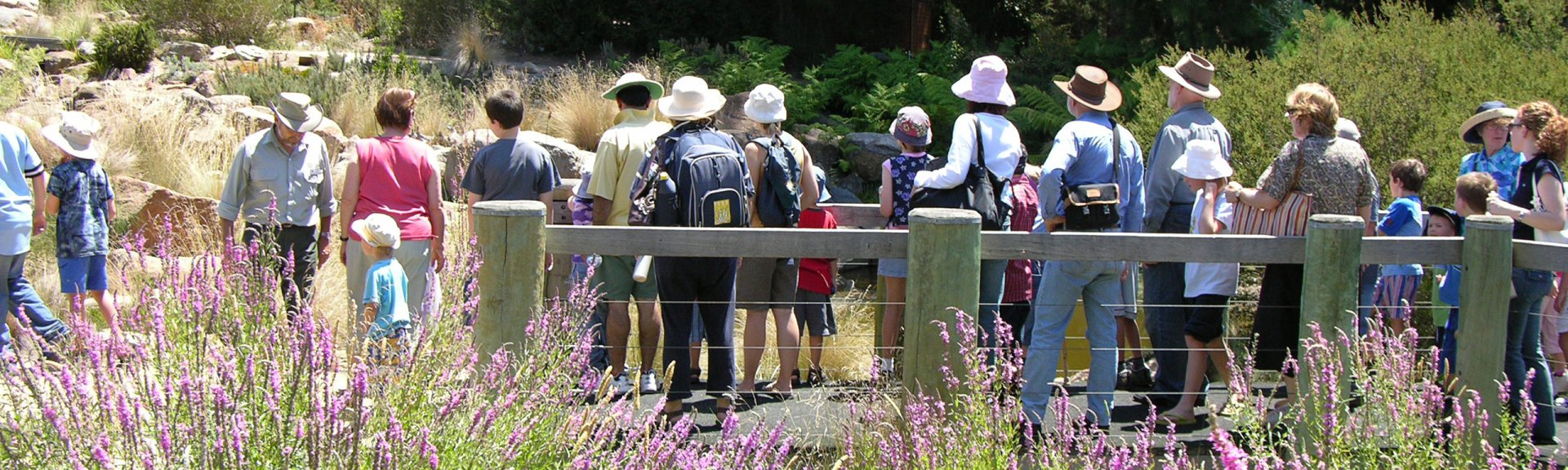 Custom guided walk in the Gardens