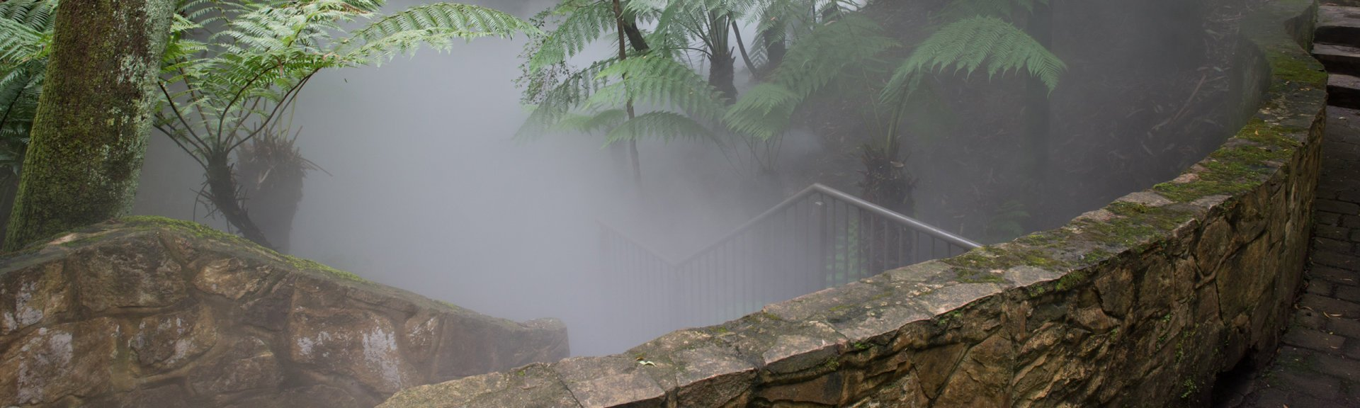Stone stairs descending into mist