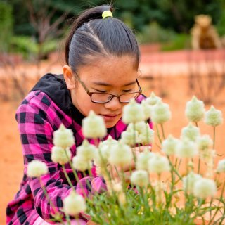 Teenage girl investigating plants in the Red Centre Garden