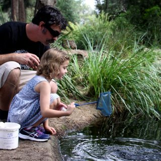 Dipping for plants and animals in a pond