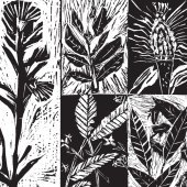 Lino prints of native Australian plants by Patrick Clarke, Jarrod Koch, Katie Jayne O'Brien, Zac Elliot and Sadie Grant Butler