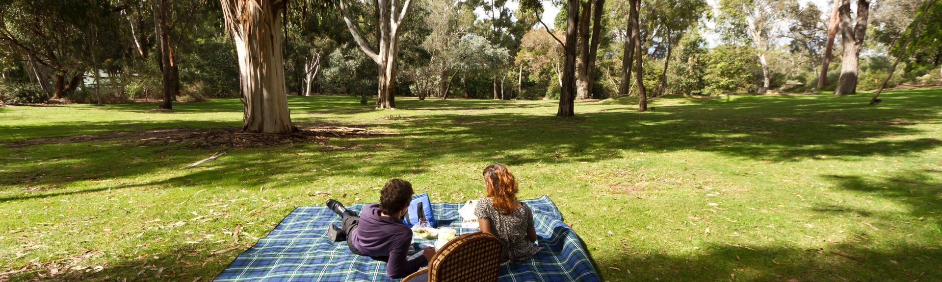 A picnic on the Eucalypt Lawn