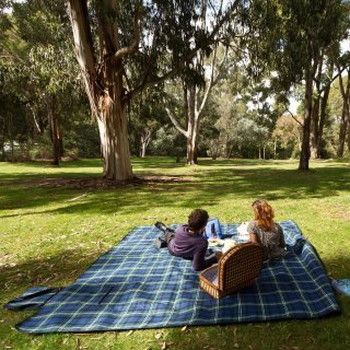 Couple having a picnic on the Eucalypt Lawn