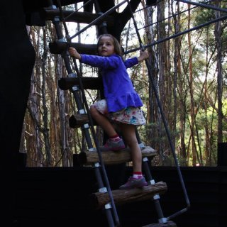 Girl climbing a ladder to the Paperbark Treehouse