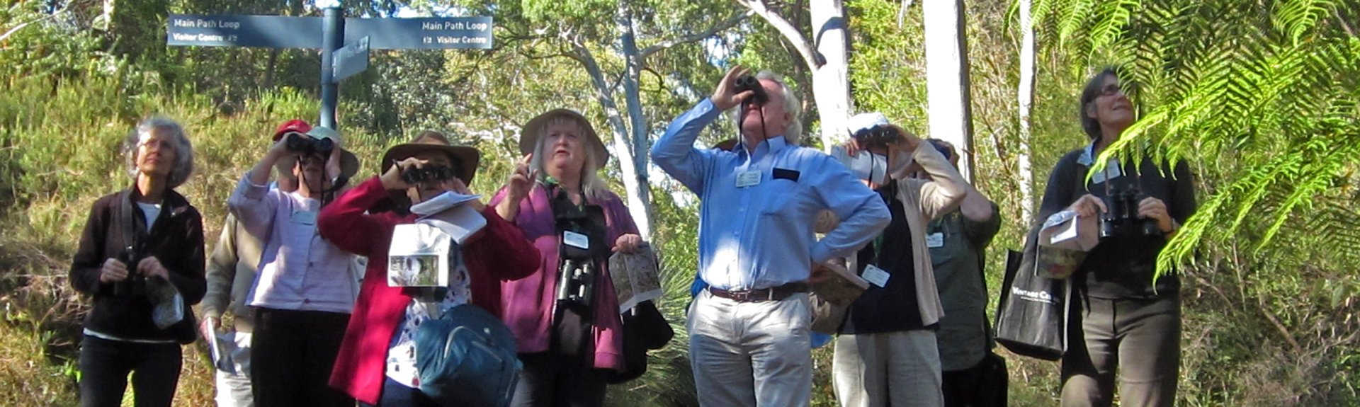 Birdwatchers at the Australian National Botanic Gardens