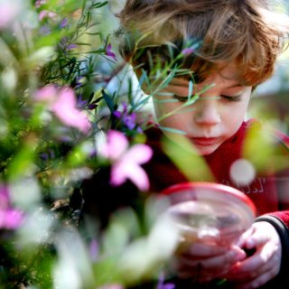 A child engrossed in nature play