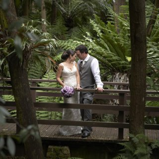 A newly married couple posing on a wooden bridge in a rainforest.