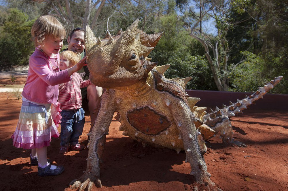 Children admiring the thorny devil statue in the Red Centre garden