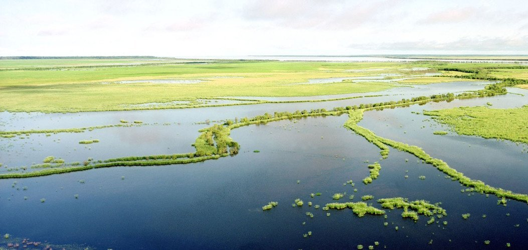 Kakadu flood plains. Photo by Ian Oswald-Jacobs.