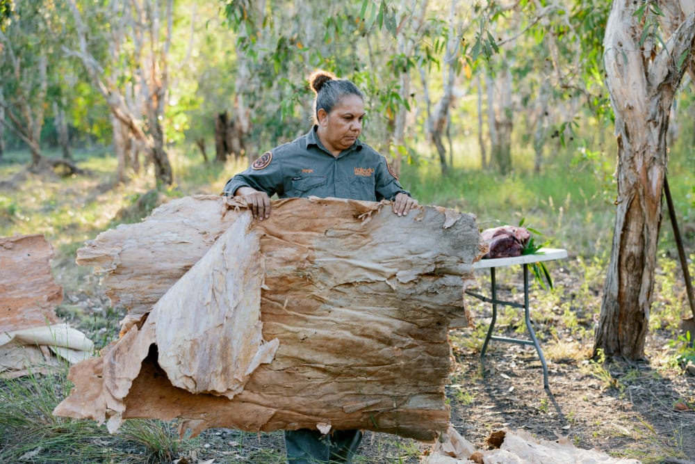 Jenny Hunter carrying a large sheet of paperbark to cover the ground oven