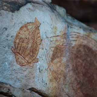 X-ray rock art at Ubirr