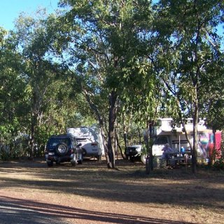 Campervans and caravans beneath the trees