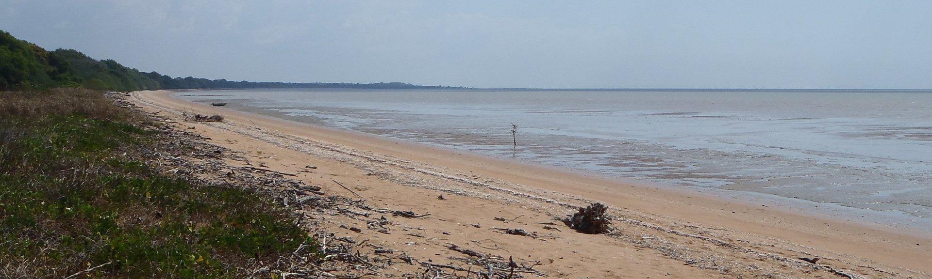 pokoks-beach