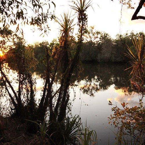 Alligator Billabong Campground | Kakadu National Park