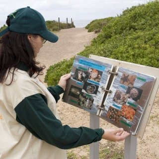 Environmental education material along the walking track at Long Reef. Photo by John Baker