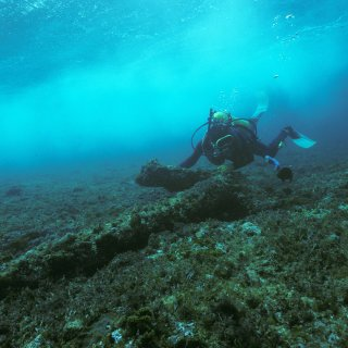 A diver inspecting one of the anchors at the HMS Sirius shipwreck site off Norfolk Island