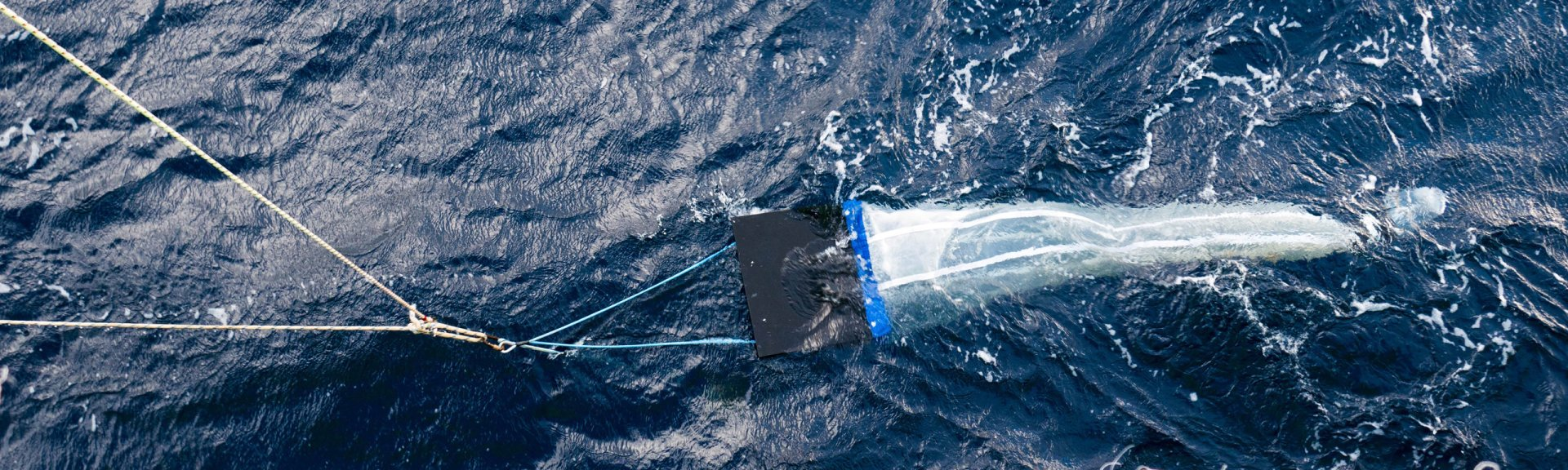 A manta net used for collecting plankton samples from the water. Photo by Asher Flatt.