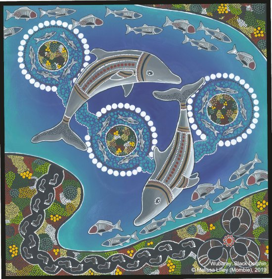 Depicted in the centre of the painting (bilbay) are two wubaray and their represented totemic (bakuwi) links to the Worimi People. The three (bularr wakul) circles in the water (bathu) represent the islands (djimban) in Port Stephens that were believed to be created (wubala) by wubaray. The footprints (yabang) coming from sea country (garuwa) give tribute to the dreaming in traditional times, with Worimi People being seen as descendants of wubaray. The markings on wubaray are replicated on the people which shows the continued connection that wubaray has with Worimi People, and illustrates the sacredness of wubaray for the Worimi. Connections with wubaray will continue for many generations to come.