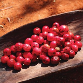 Quandongs, an important bush food. Photo: Tourism Australia