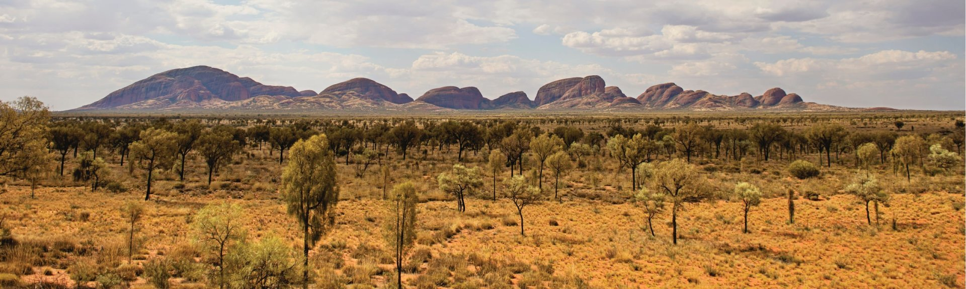Kata Tjuta. Photo: Tourism NT