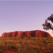 Uluru at sunrise. Photo: Steve Strike.