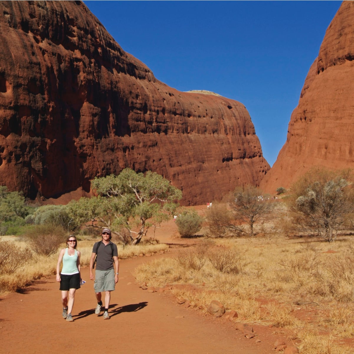 Maps And Visitor Guides Uluru Kata Tjuta National Park